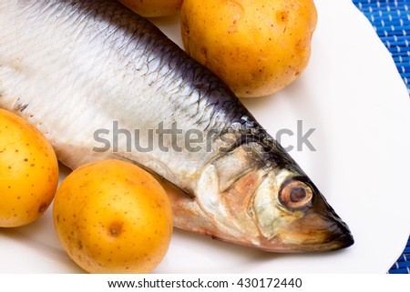Salted herring on a white plate. Russian snack. Garnish boiled potatoes. - stock photo