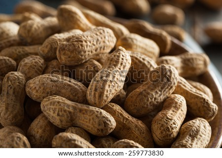 Salted Roasted Shelled Peanuts Ready to Eat - stock photo