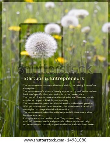 Sample Information Screen for Entrepreneurs With Dandelion Black Trim - stock photo