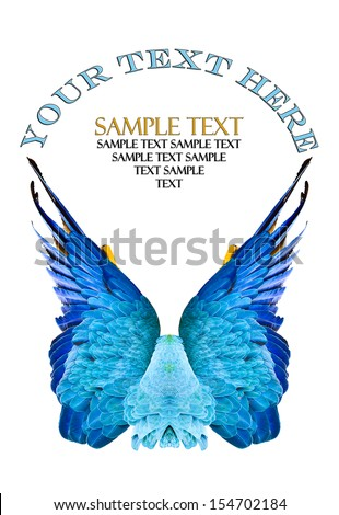 Sample logo made with wings of a blue macaw, isolated on white. - stock photo