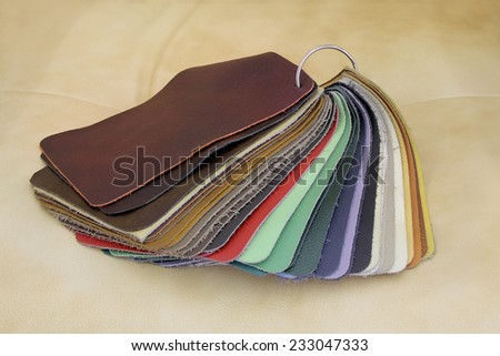 Samples of color of Leather for upholstery the furniture