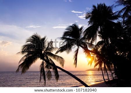 Samui island at sunset, Thailand - stock photo