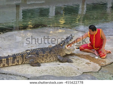 Samut Prakan, Thailand - July 20, 2016: Risk, danger and courage. A man holds out his hand in crocodile jaws. Spectacular show with crocodiles on crocodile farm in Samut Prakan near Bangkok. - stock photo