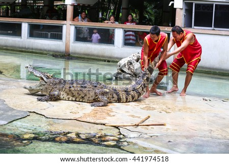 SAMUTPRAKARN,THAILAND - June 4: crocodile show at crocodile farm on June 4,2016 in Samutprakarn,Thailand. This exciting show is very famous among tourist and Thai people - stock photo