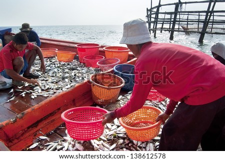 SAMUTSONGKRAM, THAILAND-DEC 10: Fishermen inspect and grade the fish ready for sale on Dec 10, 2010 in Samutsongkram, Thailand. Samutsongkram is a coastal province where commercial fisheries prevail
