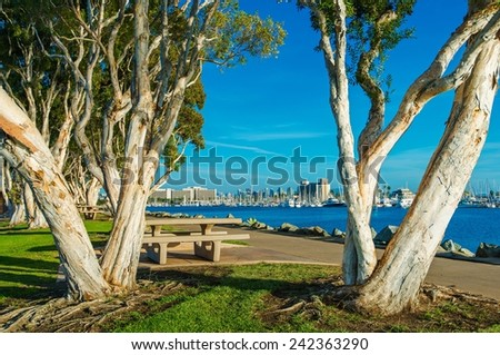 San Diego Waterfront Public Park, Marina and the San Diego Skyline. California, United States. - stock photo