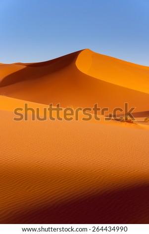 San Dunes in the Sahara Desert in Morocco - stock photo
