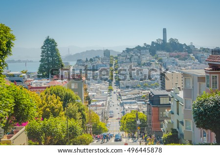 SAN FRANCISCO, CALIFORNIA - 2015, JUNE 24:  road with green trees and buildings at San Francisco, USA