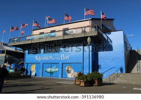 ... california-usa-december-aquarium-of-the-bay-a-public-aquarium-at-pier