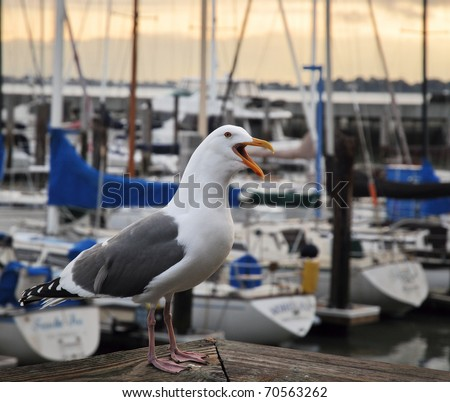 San Francisco's Fisherman's Wharf - stock photo