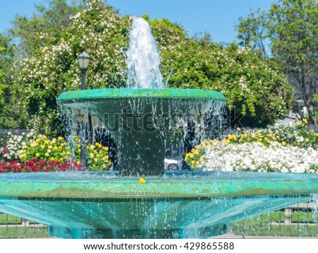 San Jose Municipal Rose Garden is a rose garden located at the intersection of Naglee and Dana Avenues, San Jose, California, in the Rose Garden neighborhood. - stock photo