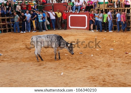 SAN JUAN, HUELVA, SPAIN - JUNE 23: The festival of St. John the Baptist's. Running of the Bulls of San Juan is the most popular celebration in Andalusia on June 23, 2012 in San Juan, Huelva, Spain.