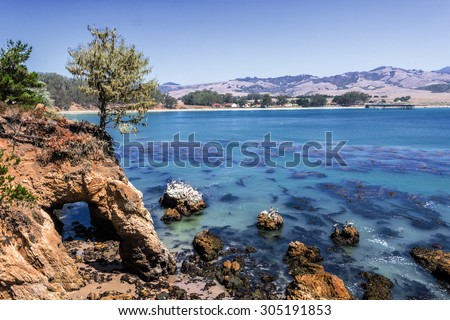 Simeon stock images royalty free images vectors for San simion