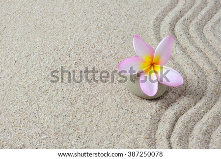 Sand and frangipani flower on a zen stone with copy space. - stock photo
