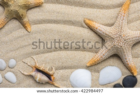 Sand and sea shells frame