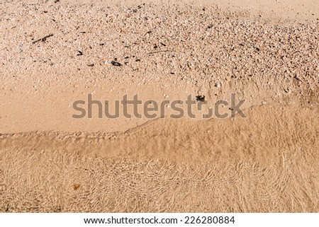 sand at the sea texture or background