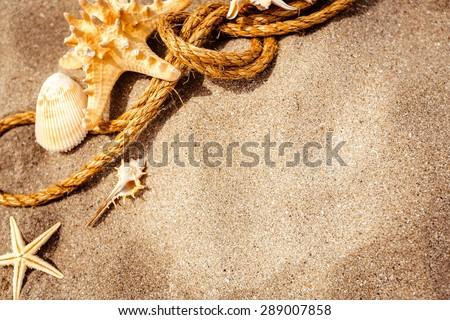 Sand, beach, shell. - stock photo