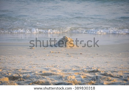 Sand castle that erosion by waves. - stock photo
