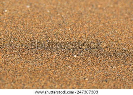 Sand close up - stock photo