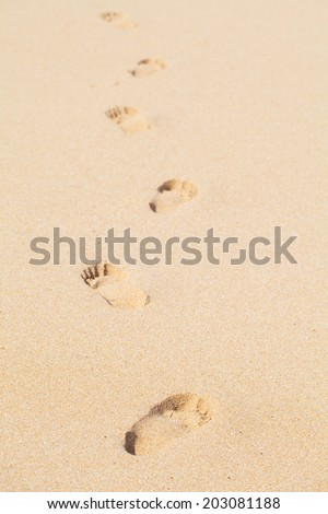 sand closeup as texture for background