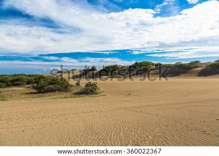 Sand dessert with bushes on Caribbean Sea, Dominican Republic