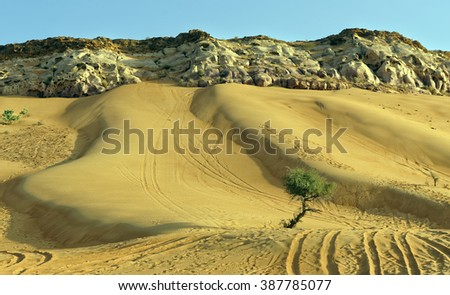 Sand dune and rock surface textures in the desert outside Dubai City, United Arab Emirates