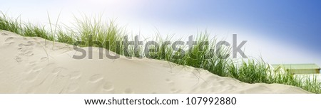 Sand dune at the beach - stock photo