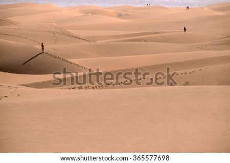 Sand Dune Desert in Maspalomas - stock photo