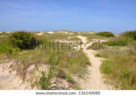 Sand Dune in Cape Hatteras National Seashore, on Hatteras Island, North Carolina, USA - stock photo