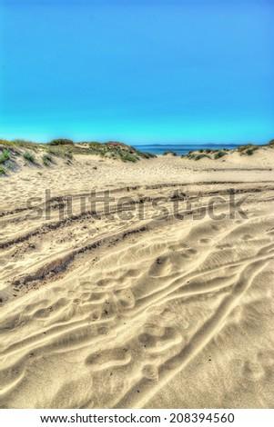 sand dune in Platamona beach, sardinia - stock photo