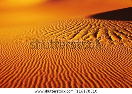 Sand dune in Sahara Desert - stock photo
