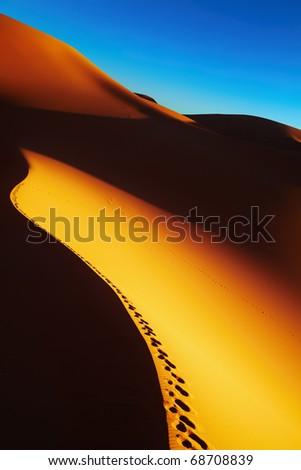 Sand dune with footprints at sunrise, Sahara Desert, Algeria - stock photo