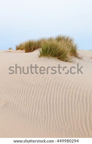 Sand dune with tuft of grass - stock photo