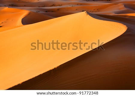 Sand dunes in Sahara Desert, Africa - stock photo