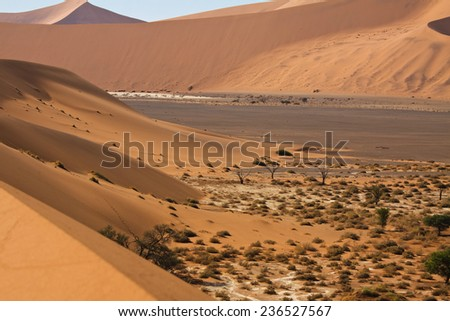 sand dunes moving into salt pan, Namib Desert, Sossusvlei, Namibia
