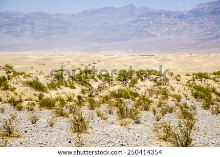 Sand Dunes of Mesquite Flats desert, Death Valley, California - stock photo
