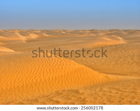 sand dunes of the desert - stock photo