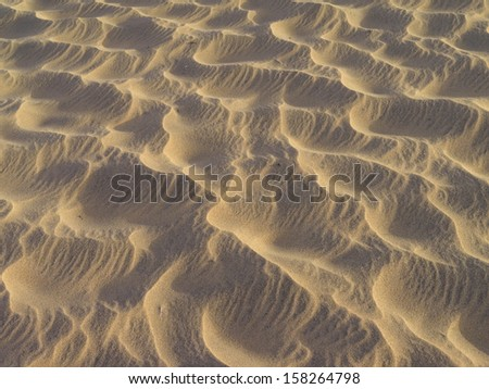 sand dunes on a beach at Gran Canaria - stock photo