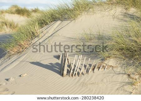 Sand Dunes on the Mediterranean Sea - stock photo