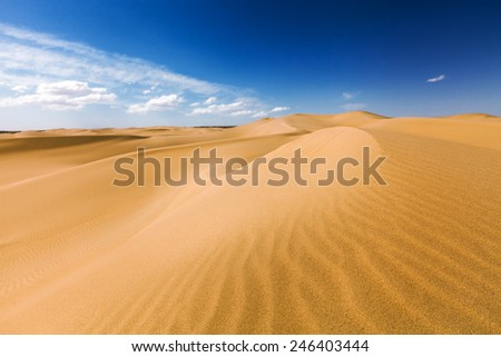 Sand dunes under blue sky. Desert near Senek village, Kazakhstan. Previously, village houses transferred due to sands movement. Now desertification stopped by planted trees. - stock photo