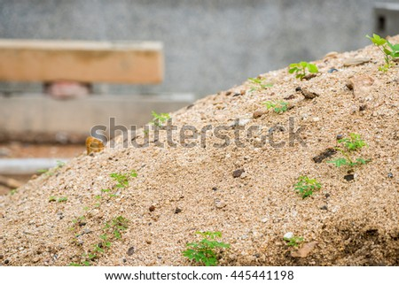 sand for construction work