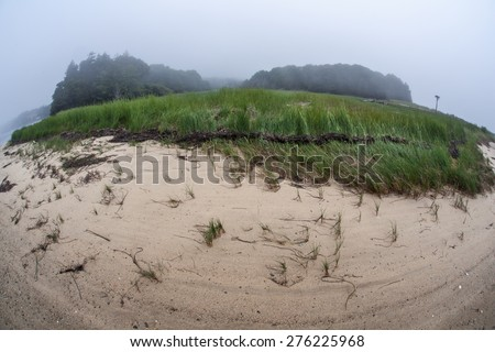 Sand fringes a salt marsh in a shallow bay on outer Cape Cod, Massachusetts. Marshes are ecologically vital to the environmental health of this region. They are habitat for a wide diversity of life. - stock photo