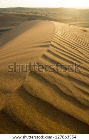Sand hill in an arabian desert in the United Arab Emirates - stock photo