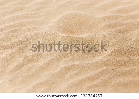 sand in nature as a background