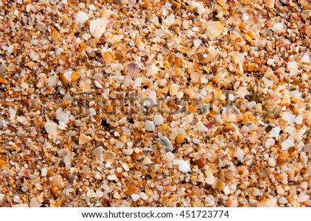 sand of small shells on the coast as background closeup - stock photo