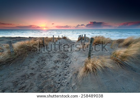 sand path to North sea beach at sunset - stock photo