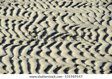 Sand ripples in the sea bottom seen at low tide.