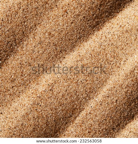 Sand texture as a background. Close up