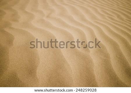 sand texture background - stock photo