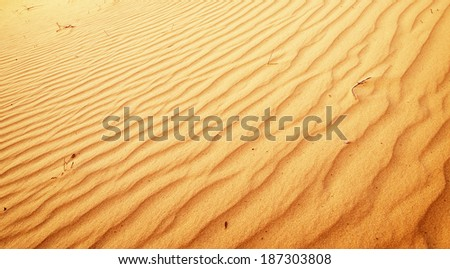 Sand texture.Composition of nature.